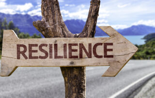 A tree has a sign on it which reads Resilience.