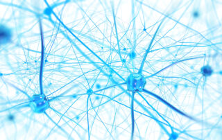 Stylised drawing of brain neurons and axons in light blue colour.